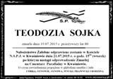 Sojka Teodozja