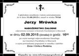Mrówka Jerzy