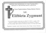 Zygmunt Elżbieta