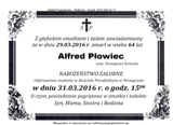 Płowiec Alfred