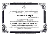 Kyć Antonina