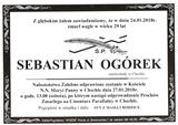 Ogórek Sebastian