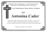 Cader Antonina