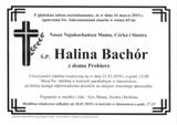 Bachór Halina