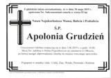 Grudzień Apolonia