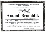 Antoni Bromblik