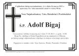 Adolf Bigaj