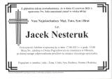 Jacek Nesteruk