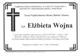 Elżbieta Wojna